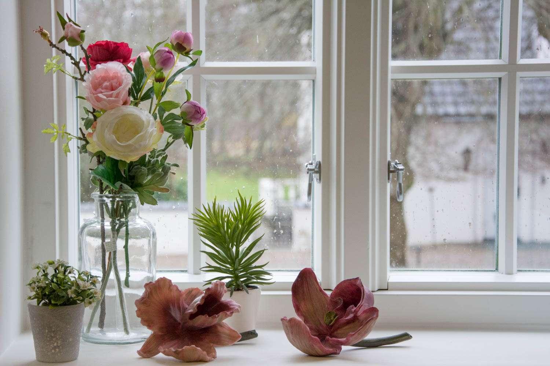 Stor orkide blomst - Neder Kjærsholm Hovedgaard
