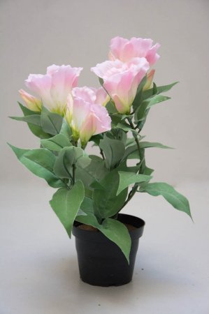 Falske blomster - Lyserød blomst i potte